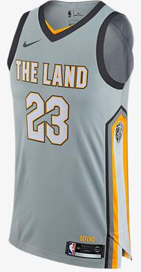 "best cheap 69a23 8b584 LeBron James ""The Land"" Nike Jersey – Platinumstars"